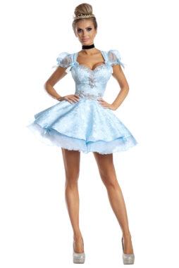 Lost Slipper Princess Costume